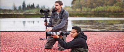 pixelMotionFilms_CranberryFarm_thumb